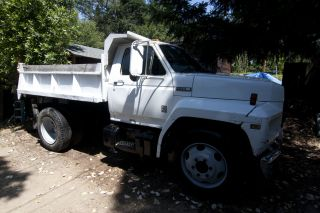 1981 Ford F600 photo