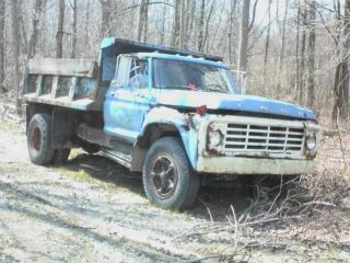 1977 Ford F 700 photo