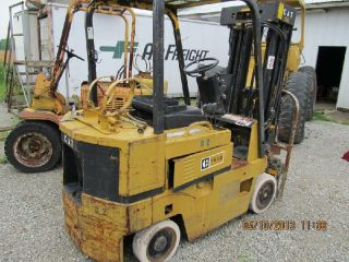 Cat Forklifts photo