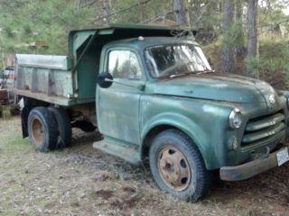 1954 Dodge photo