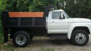 1976 F600 Dump Truck photo