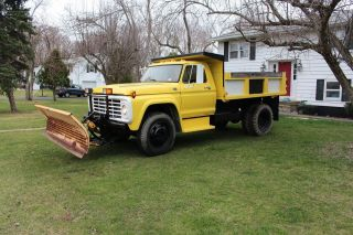 1979 Ford F600 photo
